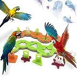 Puzzle de acrílico Juguetes de loro Juguetes de inteligencia de pájaros para Macaw de loros Grises africanos Eclectus Cockatoo Budgies de Amazon Cockatiels Parakeet