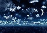 Fototapete Nachthimmel L 300 x 210 cm - 6 Teile Vlies Tapete Wandtapete - Moderne Vliestapete - Wandbilder - Design Wanddeko - Wand Dekoration wandmotiv24