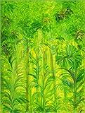 Poster 90 x 120 cm: Regenwald, Malaysia von Laila
