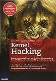 Kernel Hacking: Exploits verstehen, schreiben und abwehren: Schwachstellen in Kernel-Architekturen erkennen und Gegenmaßnahmen ergreifen