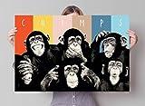 REINDERS Lustige Schimpansen Poster 91.5 x 61 cm - Bild Plakat Druck - Bunt
