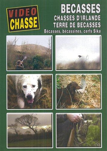 BÉCASSES Chasse d'Irlande, Terre de bécasse