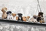 empireposter 744012Chien sur Supports d'acier-New York skydogs-Plaisir Villes Chiot Poster-Dimensions 91.5x 61cm, Papier, Multicolore, 91,5x 61x 0,14cm