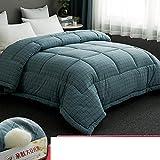 JYXJJKK Soja Faser Baumwolle Quilt,bettwäsche Dicke Warme Quilt Doppelte Quilt-f 230x200cm(91x79inch)