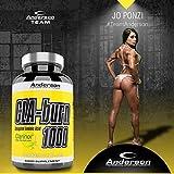 Integratore Anderson CLA Burn 60prl Clarinol Acido linoleico coniugato Omega 6 Termogenico Brucia Grassi Antiossidante