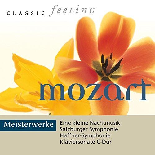 Konzert für Klavier und Orchester No. 18 in B-Flat Major, K. 456: II. Andante un poco sostenuto in B-Flat Major