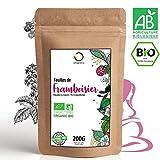 ☘️ Tisana Foglie Lampone BIO 200g | Red Raspberry Leaf Tea | Cura del benessere, Infusi e Tisane per Maternita e Gravidanza, Dolori Mestruali