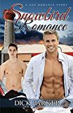 Snowbird Romance: A Gay Romance Story