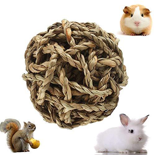 4 Stück sind es, die vom Kaninchen sofort vernichtet werden - die Hunde interessiert es nicht