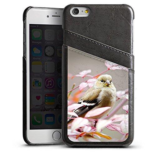 Apple iPhone 5s Housse Étui Protection Coque Oiseau Moineau Petit oiseau Étui en cuir gris