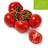 Bio Tomaten Rispe, 500g