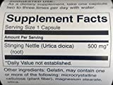 Swanson Premium Brand Stinging Nettle Root 500mg -- 2 Bottles each of 100 Capsules by Swanson Premium by Swanson