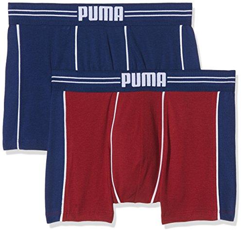 PUMA Herren dark red/Blue