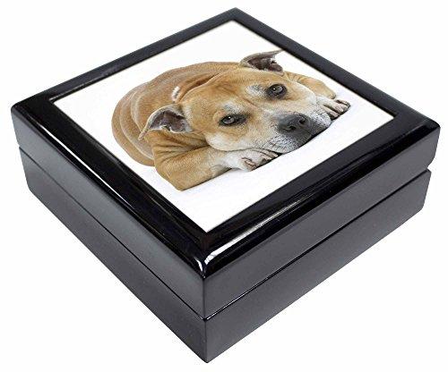 Advanta - Jewellery Boxes Rot Staffordshire Bull Terrier Hund Andenken/Schmuck Box Weihnachten Geschenk (Hund Schmuck Terrier Bull)