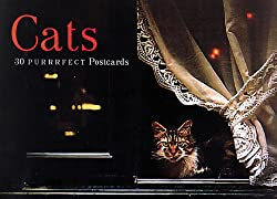 Cats Postcard Book