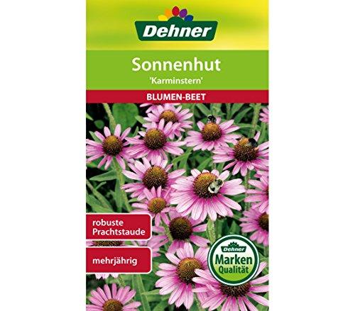 Dehner Blumen-Saatgut, Sonnenhut,