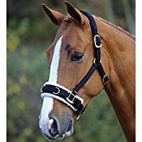 White Horse Equestrian Training Fleece Lined Padded Adjustable Lunging Cavesson