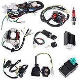 Liseng Bobine CDI, stator et faisceau de câbles magnétique, pour les motos Pit, Quad, Dirt Bike et Go Kart VTT 4temps de 50,