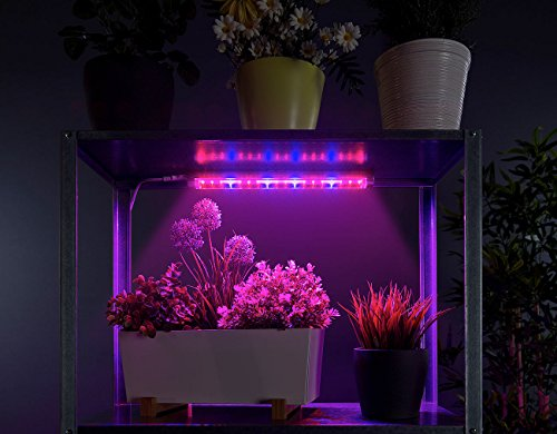 Lunartec Pflanzenlicht: LED-Pflanzenunterbauleuchte mit Rot-Blau-Lichtkombination, 520 Lumen (LED Pflanzenlampen Rot blau)