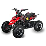 Mini ATV Quad Repti 6 Zoll Reifen Miniquad Kinderquad Cross Pocketquad Rot