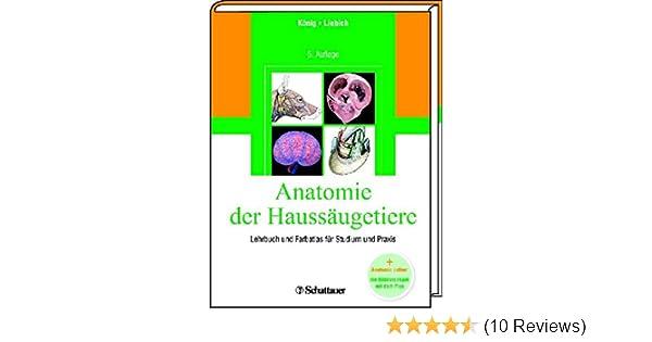 Fantastisch Studieren Anatomie Online Bilder - Anatomie Von ...