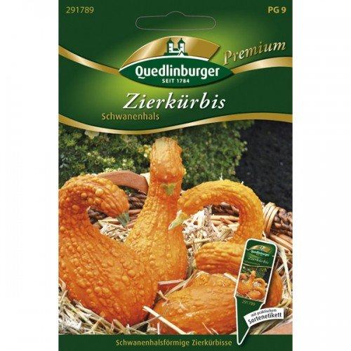 Zierkürbis Schwanenhals