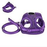 elfisheu Hundegeschirr Softgeschirr Atmungsaktiv Weste Leine Halsband Geschirr Set für Hunde Katze Haustier (Lila)