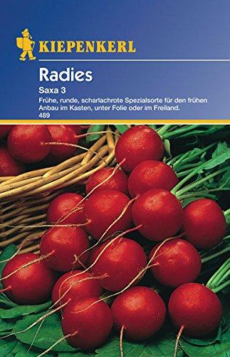 Sperli Gemüsesamen Radieschen Saxa 3, grün