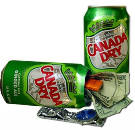 canada-dry-diversion-can-safe-by-bewild