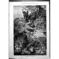 Stampa Antica del Terreno Boscoso 1887 del Maschio del Cacciatore di Balestra di Tempo Olden Caccia dei Cervi - Caccia Dei Cervi Decor