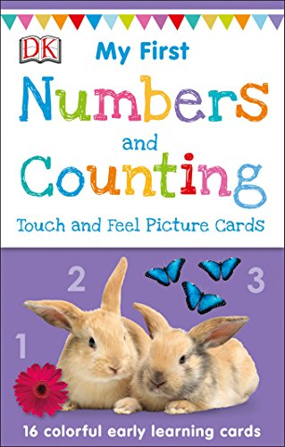 Numbers and Counting (My 1st Touch & Feel Picture Cards)