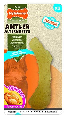 Nylabone Kauspielzeug für Welpen Antler Kauspielzeug für Hunde -