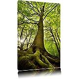 Riesiger Baum im Dschungel Format: 60x40 auf Leinwand, XXL riesige Bilder fertig gerahmt mit Keilrahmen, Kunstdruck auf Wandbild mit Rahmen, günstiger als Gemälde oder Ölbild, kein Poster oder Plakat