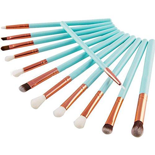 Dosige 12 pcs Set Multifonctionnel Pinceaux Professionnel Pinceaux de Maquillage Yeux Brosse de Brush Cosmétique Professionnel - Poignée Bleue