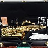Marke neue Musik FANCIER Club Alto Saxophon a-991Gold Lack Professionelle Alt...