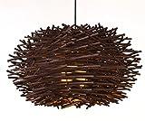 Nido di uccello Lampadari moderni Hanging Led Illuminazione personalità, ristorante strumenti musicali lampade soppalchi moderni personalità creativa minimalista Arte bar Diametro 50cm , 2