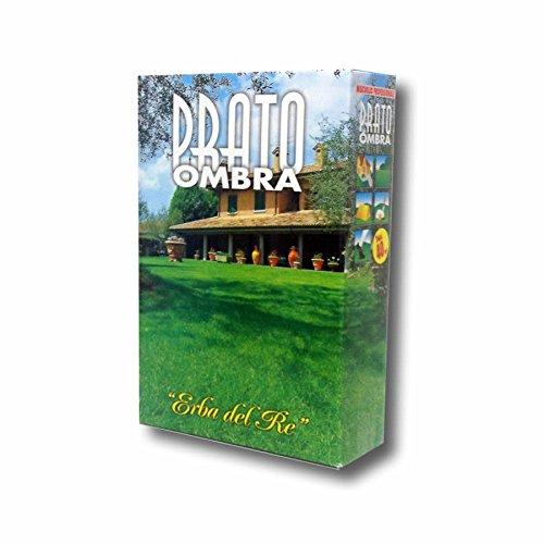 Galleria fotografica Sementi Prato Ombreggiato BESTPRATO OMBRA 1KG