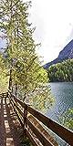 Glas - Bild Artland Wandbild Landschaften Fotografie Rene Prager: Wanderweg am See in verschiedenen Größen