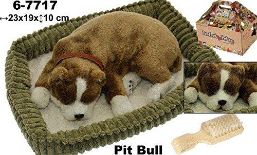 Supernova decoracion-peluche mit Bewegung Hund Pit - Spielzeug Pit Bull