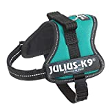 Julius-K9, 162PG-MM, K9-Powergeschirr, Größe: Mini-Mini, petrol grün