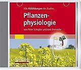 Alle Grafiken des Lehrbuchs Pflanzenphysiologie