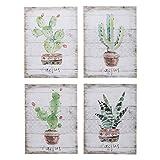 MONTEMAGGI Quadro Cactus Fondo A Righe 4 Dis.Ass. 30X1.5X40cm