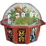DuneCraft Dome Terrariums - Biblical Garden