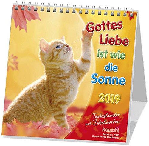 Gottes Liebe ist wie die Sonne 2019: Postkarten-Kalender für Kinder mit Gedichten und Gebeten