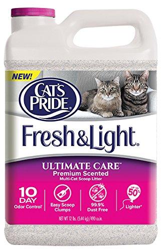 Cat 's Pride Frisch und Light Ultimate Care Premium Duft Multi-cat Scoop Katzenstreu, 5,4 kg Krug, 12-Pound -