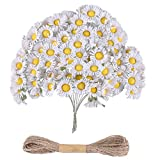 100pz Bouquet Margherita Gerbera Finta Bianco+10M Corda Fiore Fiorellini Decorazione per Bomboniere Matrimonio Compleanno Battesimo Natale