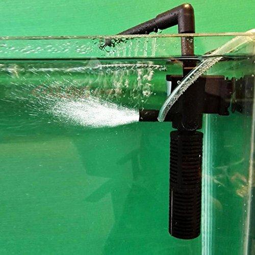 1x Kleiner Fischbehälter Niedriger Wasser Schildkröte Filter Spray Bar Aquarium Filter (Interne Aquarium Filter)