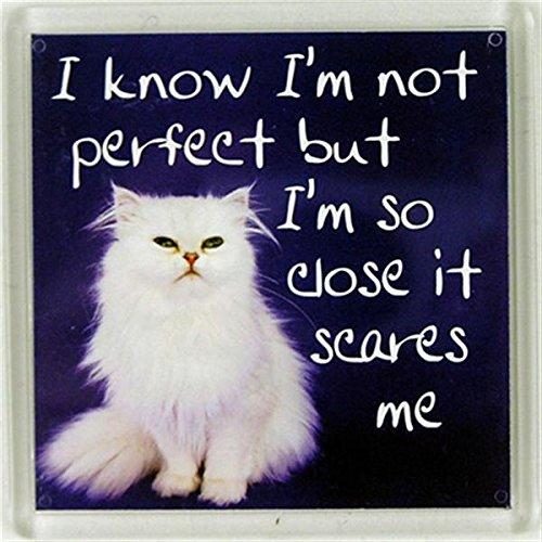 Sé que no soy perfecto, pero estoy tan cerca que me asusta Imán de nevera 129