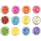 Rozia 12 Colors Nail Art Make Up Glitter Shimmer Dust Powder Decoration