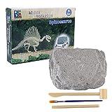 Lommer Kinder Archäologie Set Ausgrabungs Set Dinosaurier Fossil Spielzeug Dinosaurier Ausgrabungsset Lehrreich Spielzeug für Kinder